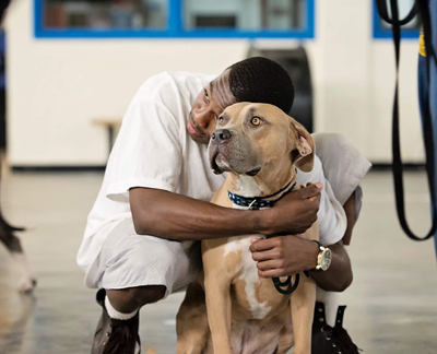 A Letter To The Men of Pawsitive Change at Corcoran State Prison